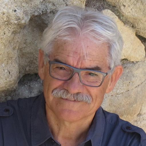 Vicente Lull